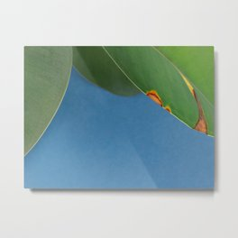 Eroded leaf Metal Print
