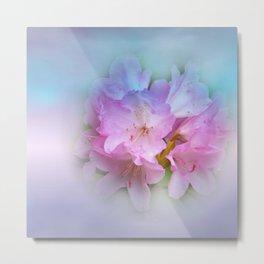 blossoms of may Metal Print