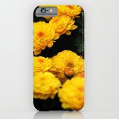 Golden Dew Drops II. iPhone 6s Slim Case