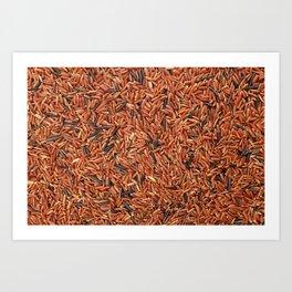 Camargue red rice grains Art Print