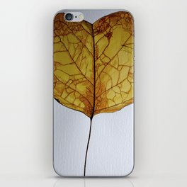 Cercis Siliquastrum - 7 Nov iPhone Skin