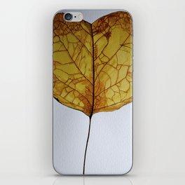 Cercis Siliquastrum - 7 Nov iPhone Skin
