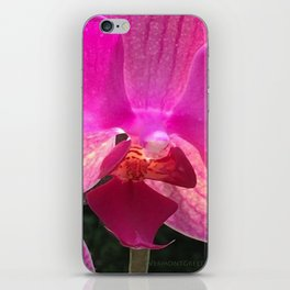 Fuschia Orchid Flower Blossom from Jalisco Mexico iPhone Skin
