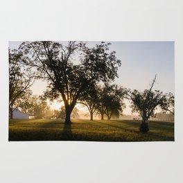 Foggy Morning 2 Rug