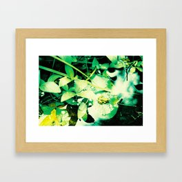 Croak Framed Art Print
