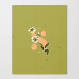 S for Shasta Daisy Canvas Print