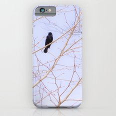 Red-winged Blackbird Pink Branches iPhone 6s Slim Case