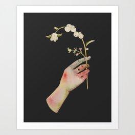 Snowberry Art Print