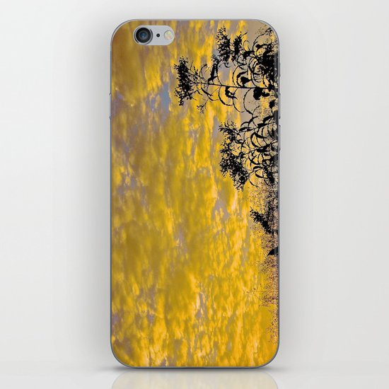 Evening Perfection iPhone & iPod Skin
