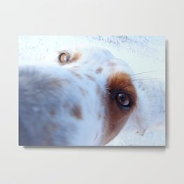 Curiouser and curiouser.. Metal Print