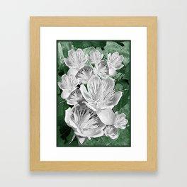 White tulip tree (Liriodendron tulipifera) Putnam Lake New York 1  Framed Art Print