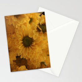 Ox Eye Stationery Cards