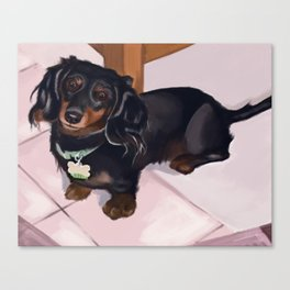 Frisky Dog Portrait Canvas Print