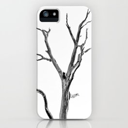 Beautiful Past Trees iPhone Case