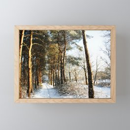 Forest Snow Scene Framed Mini Art Print