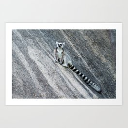 Bright eyes in a black and white world Art Print