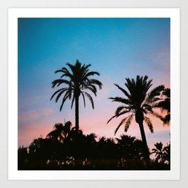 Palms in sunset Art Print