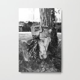 Through the gates & down the path to the horse's head Metal Print