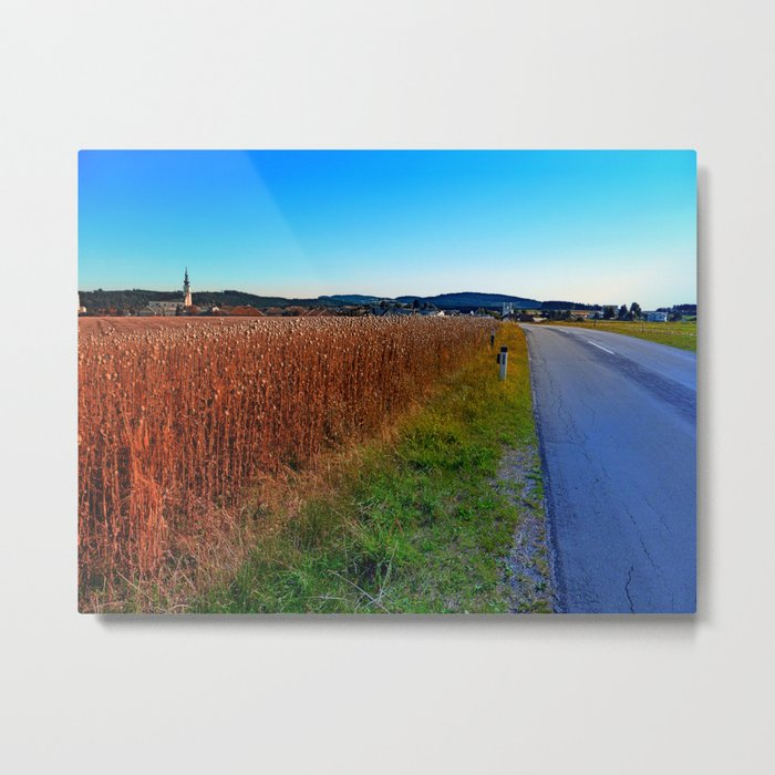 Poppy field road Metal Print