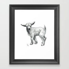 Little Goat Baby  SK134 Framed Art Print