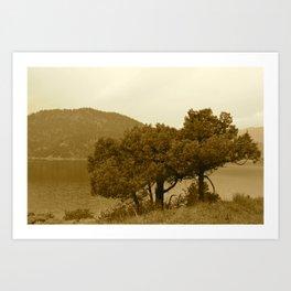 Rocky Mountain Lake in Sepia - M Art Print