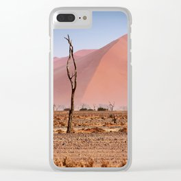 NAMIBIA ... pastel tones II Clear iPhone Case