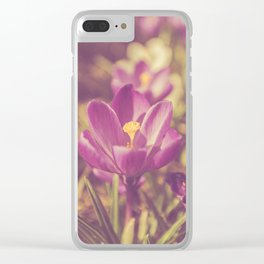 Flowers Crocuses Violet Close-up Spring Matte Clear iPhone Case