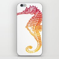 seahorse iPhone & iPod Skins featuring Red & Orange Seahorse by Aloke Design
