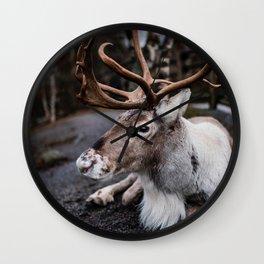 Winter Reindeer II Wall Clock