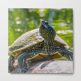 Turtle is the New Leopard Print Metal Print
