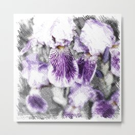 Sketchy Iris Flowers Metal Print