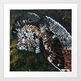 Perceval the Owl Art Print