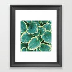 Some Like It Hosta Framed Art Print