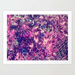 Alien Plants Growing on Gate Art Print