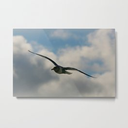 Graceful Wings Metal Print