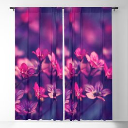 Marvellous Little Violet Flowers High Resolution Blackout Curtain