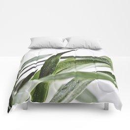 Minimal Yucca Leaves Comforters