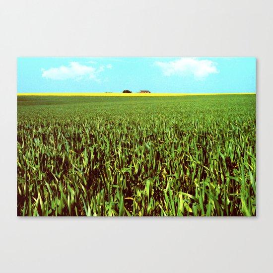 High Plains Crop Canvas Print