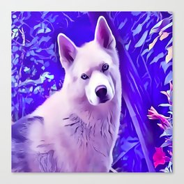 Isabella White Siberian Husky Canvas Print