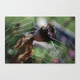 Web of Water Canvas Print