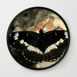 Butterfly on a Rock Wall Clock