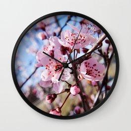 Cherry Blossom Photography Print Wall Clock