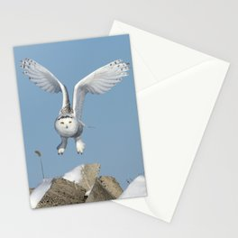 Her wings are my prayer Stationery Cards