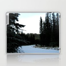 Wintertime in WaterValley Laptop & iPad Skin