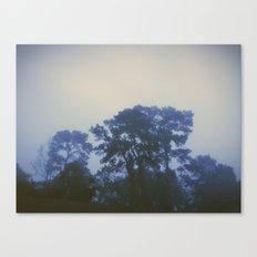 Dense Canvas Print