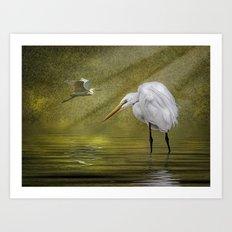 Everglades Evening Art Print