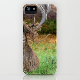 Crowned. iPhone Case