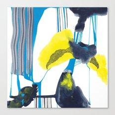 flashflood Canvas Print