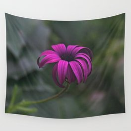 Has been a long day (African Daisy Flower) Wall Tapestry