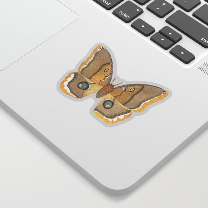 Watercolor Polyphemus Moth Sticker